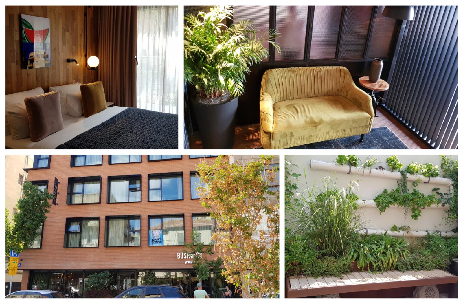 תמונות של המלון מבחוץ ומבפנים
